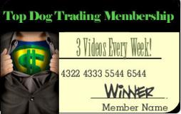 top dog trading video newsletter