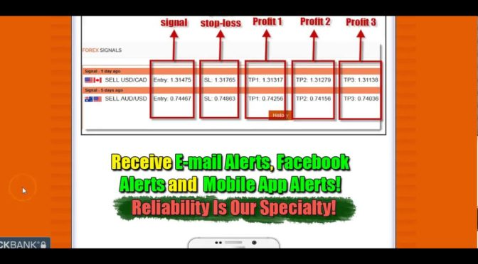 Forex signal service reviews
