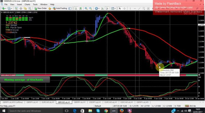 Forex strategy success rate