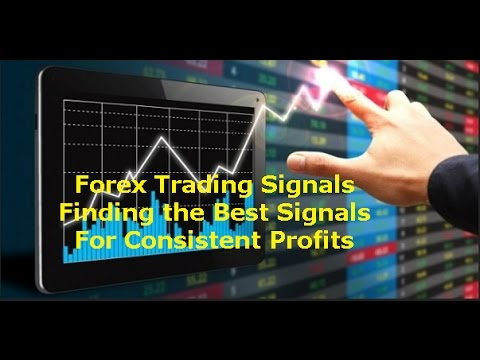 Forex Signals Provider – Review of the Best Services