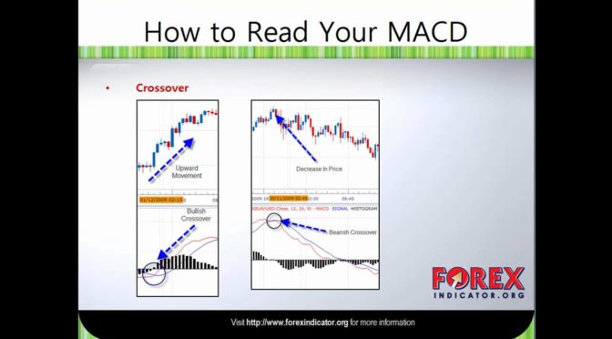 Forex MACD Indicator Explained