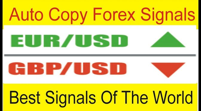 Auto Copy Best Forex Signals of The World | Copy Direct Live Trad…