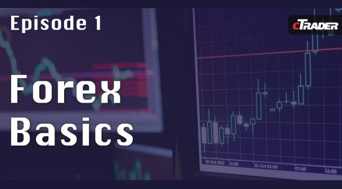 Forex Trading for Beginners – Learn to Trade Forex with cTrader -…