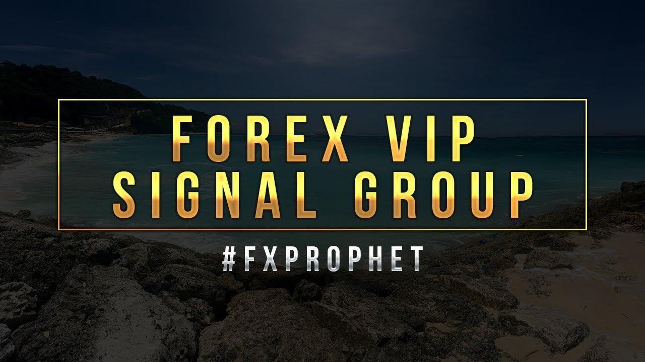 signal vip forex)